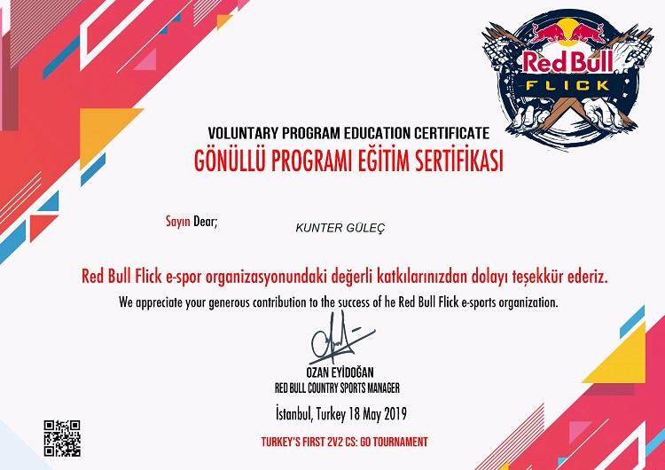 Red Bull Flick E Sports
